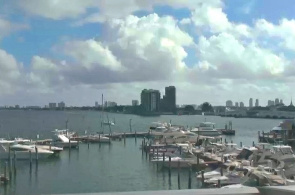 Miami Biscayne Bay Webcam online